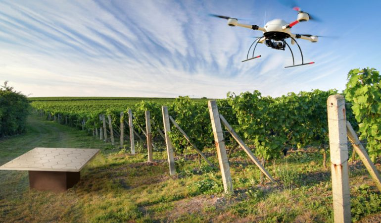 За дачниками начнут следить с помощью дронов