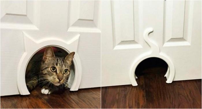 Квартирные идеи для кошек